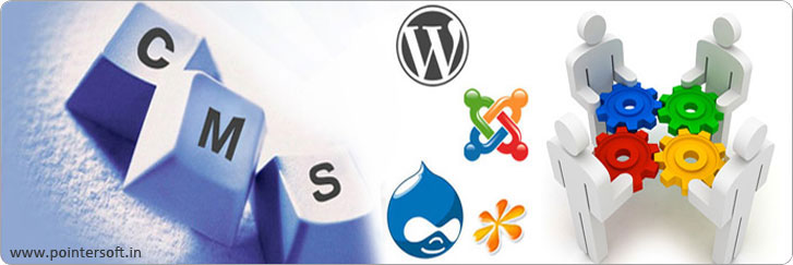 CMS Website Design, CMS Website Design Company Delhi, Content Management Services